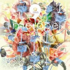 Merope. 9 Days