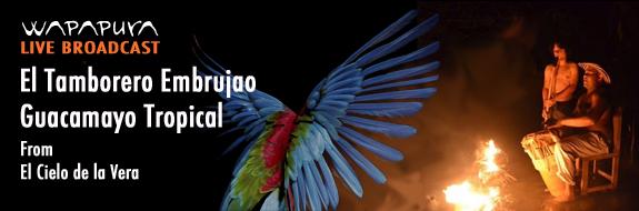 El Tamborero Embrujao & Guacamayo Tropical